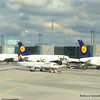 Most of Lufthansa's Airbus 380s were parked across from my plane at the Frankfurt airport. Those beasts are huge!
