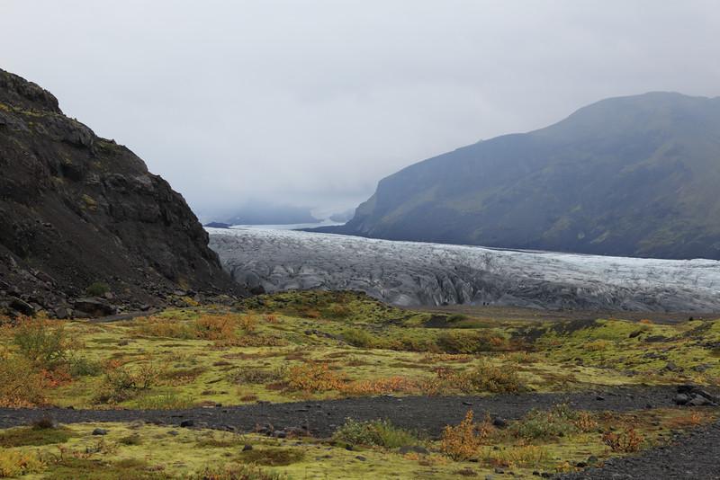 The toe of Skaftafellsjokull.