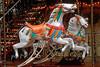 Parisian Horses