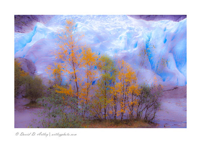 Trees in autumn colors contrasted with glacial blues at base of Briksdal Glacier, Stryn, Norway