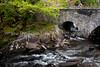 126  Bridge and Stream Near Ladies View,  Ireland
