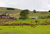 39  Irish Countryside, Northern Ireland