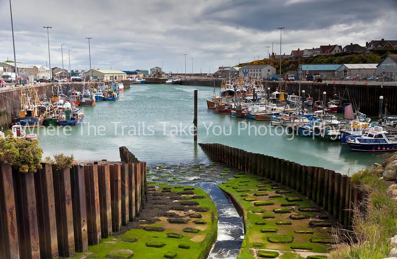 32  Kilkeel Harbor, Northern Ireland
