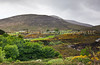 17 Mourne Mountain Countryside on an Overcast Day, Northern Ireland