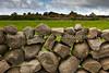 19  Stone Fences, Northern Ireland Countryside