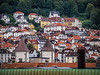 Norway, Bergen - Colorful rooftops in Bergen