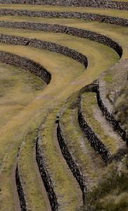 Moray Terrace (Detail #1), Peru
