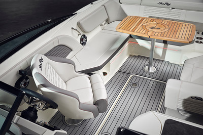 2020-12-09 Sea Ray SPX 230 outboard1610