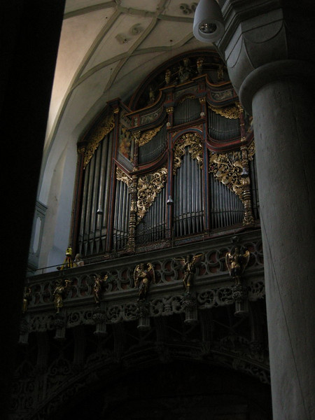 The ginormous organ