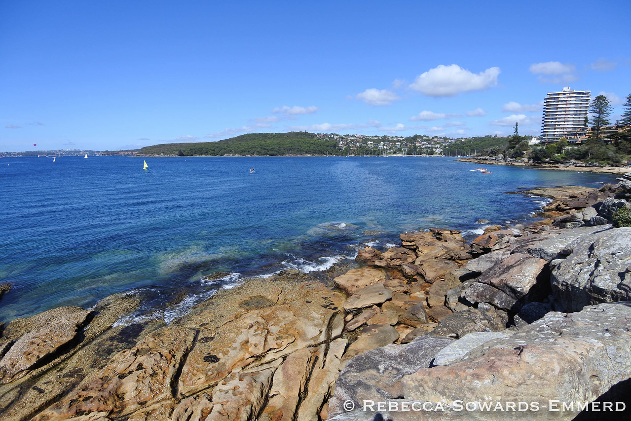I walked the first part of the Manly to Spit Bridge walk.