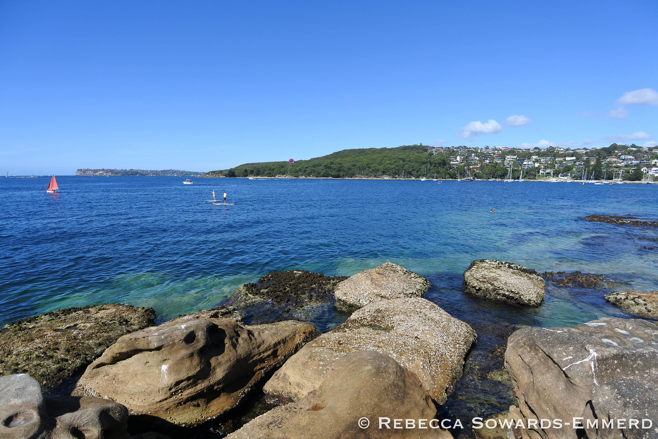 Looking across the cove to a part of Sydney harbour National Park