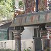 Neighborhood temples