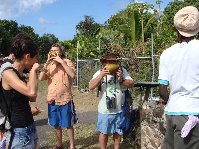 Eating sugar cane and coconut. Pictured:  Lisa LaManna (left, in black), Max F(Bard College), Dr. Veit, and the curator of the Annaberg botanical garden. [Photo credit:  Lisa Manne]