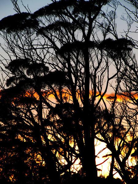 Sunrise at Windermere Hut