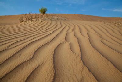 Desert dunes.