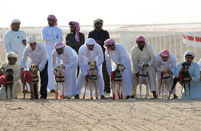 Start of the Saluki Racing