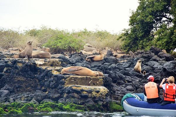 Galapagos Day 10 - Isla Lobos & Tortoise Breeding Center