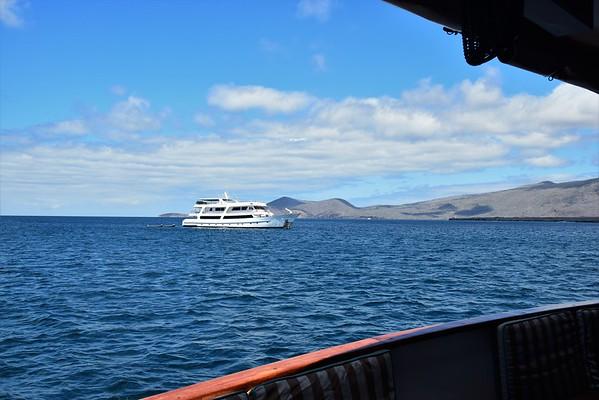 Galapagos Day 9 - Puerto Egas & James Bay