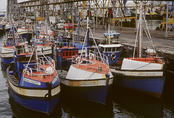 Marina, Cape Town, Alfred Basin, Victoria Basin, South Africa, Africa