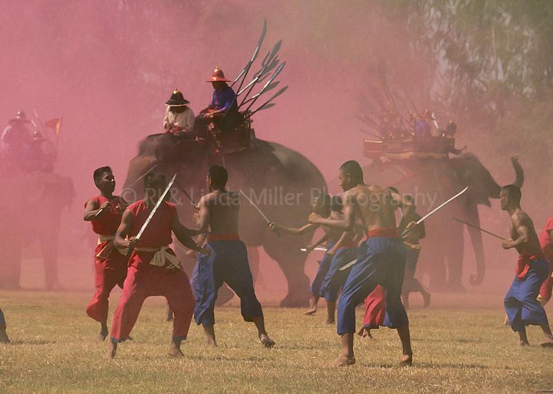 Mock Elephant Battle, Surin Elephant Festival, Surin, Thailand, Southeast Asia,