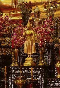 Statue of Buddha, Wat Mahaprutharam, Bangkok, Thailand, Southeast Asia,