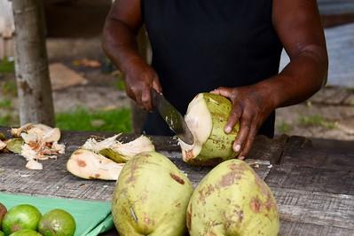 Stopping for fresh coconut milk
