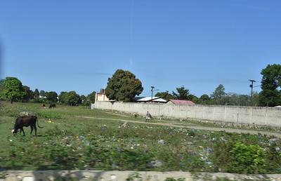 Pastoral Haiti