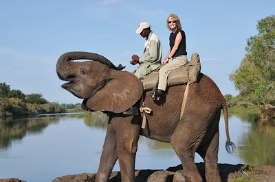 Laurie on elephant