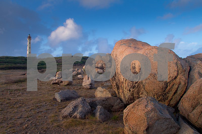 RJLM_WI  _88517  Aruba  2011-02