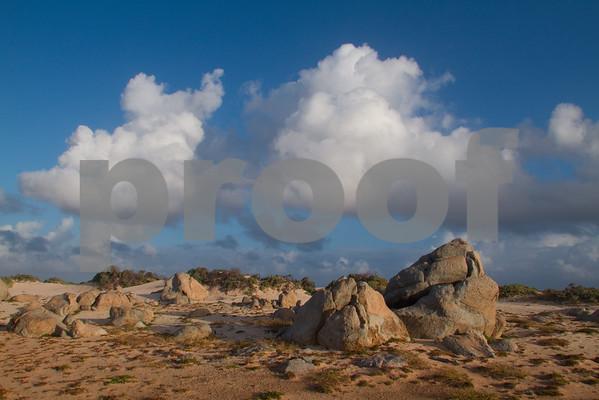 RJLM_WI  _88542  Aruba  2011-02
