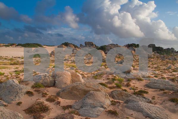 RJLM_WI  _88530  Aruba  2011-02