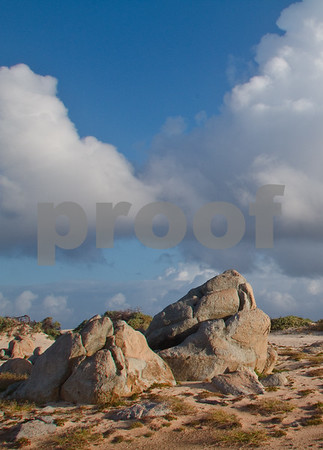 RJLM_WI  _88548  Aruba  2011-02