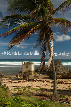 Bathsheba Cattlewash Beach, Barbados Windward Islands, Lesser Antilles, Caribbean, West Indies