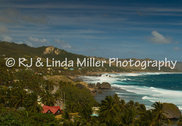 Beach, Barbados, Lesser Antillies, West Indies, Caribbean