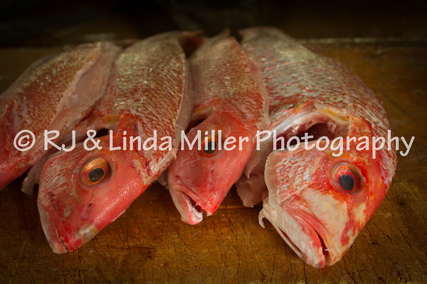 Fish Market, Barbados, Lesser Antillies, West Indies, Caribbean