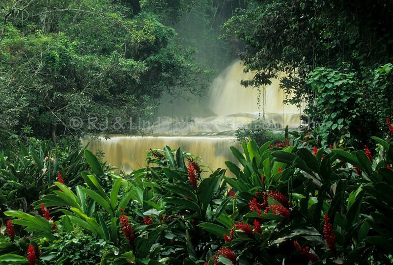 Say Yes Falls, Jamaica, Carribean