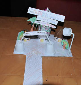 A model of an HTC for a village—brilliant!