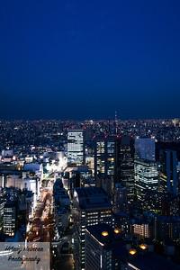Park Hyatt Tokyo View 1