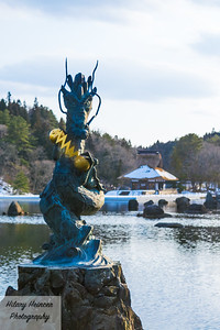 Dragon in a Koi Pond