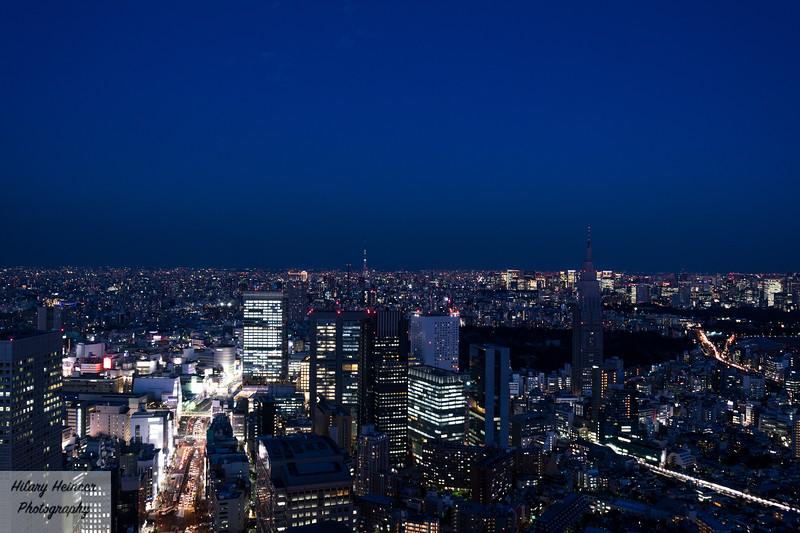 Park Hyatt Tokyo View 2