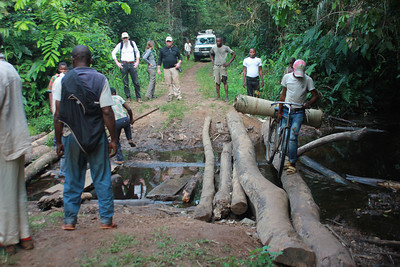 The road to Bolomba puts our pothole problems in perspective.