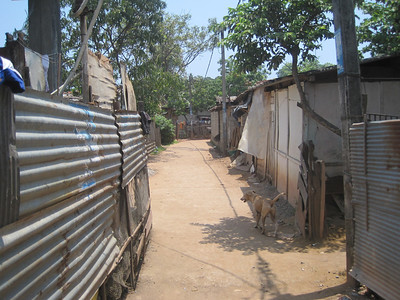 Shacks in Sri Lanka.