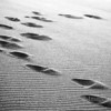 Sand sandals