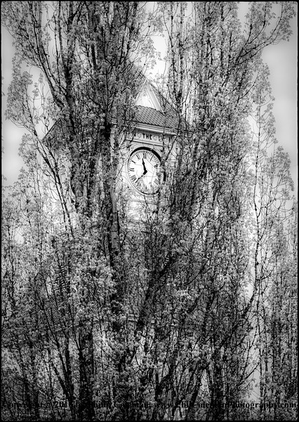 """Clock Tower, """"The Flight of Time"""""""