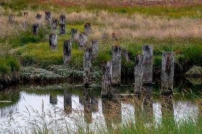 Lower Salt Creek near Joyce, Washington