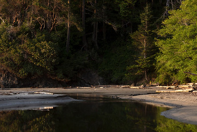 Lower Salt Creek, salt Creek Beach and Park near Joyce, Washington