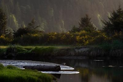 Evening light near the mouth of Salt Creek near Joyce, Washington