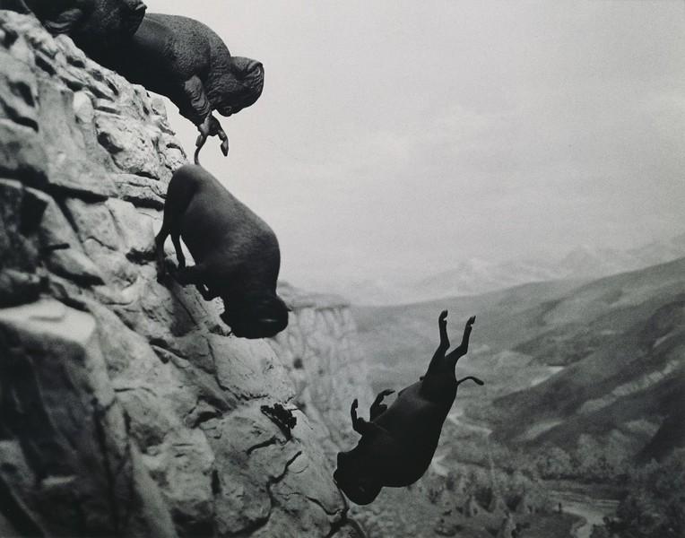 An Untitled Photograph By David Wojnarowicz