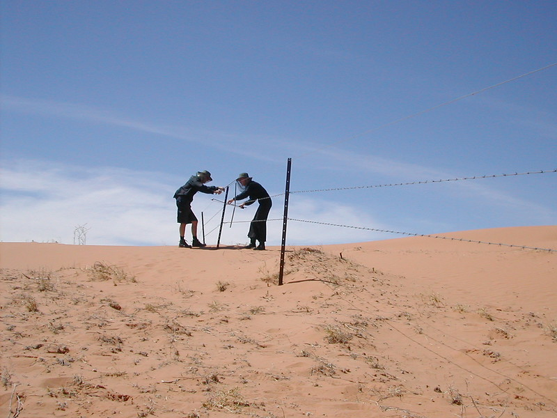Jon Rose and Hollis Taylor Making Fence Music In The Strezlecki Desert, Australia