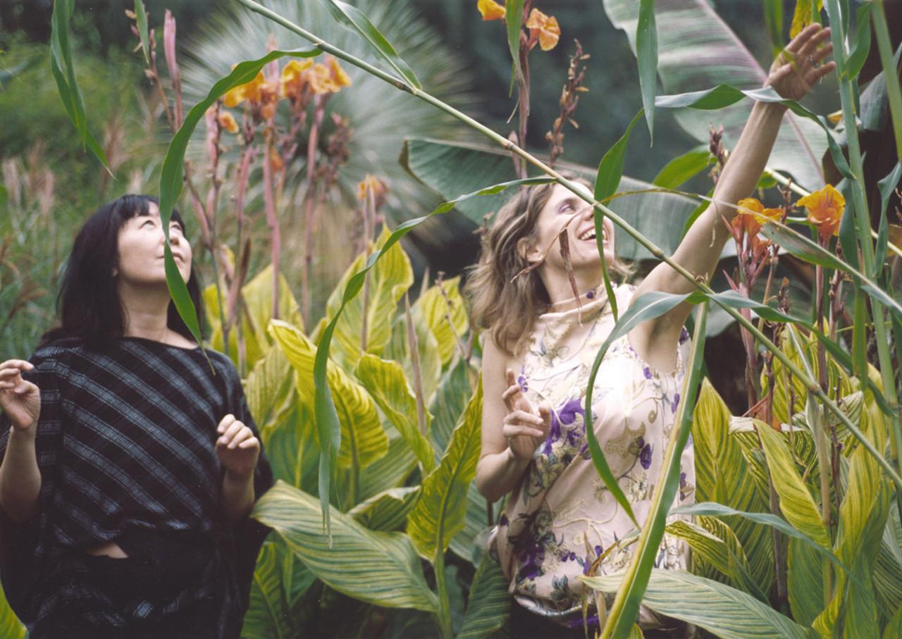 Phantom Orchard:  An Interview With Zeena Parkins and Ikue Mori.